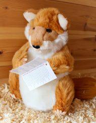 Woodland Hand Puppets - Fox