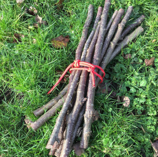 Bundle of 8 sticks 50cm sticks