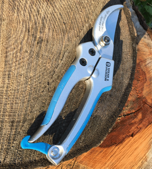 Spear-and-Jackson-Bypass-Secateurs-Blue